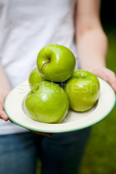 Vert juteuse pommes belle plaque Photo stock © ElinaManninen