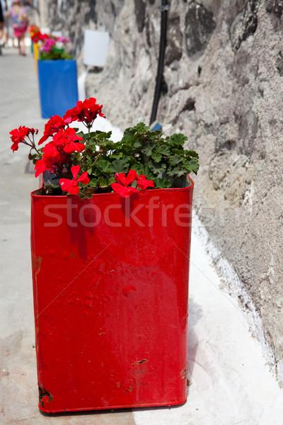 Colorful geranium pots, Santorini, Greece Stock photo © ElinaManninen