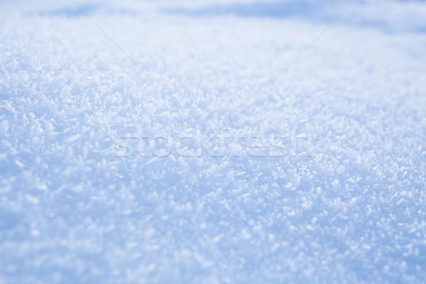 Fresh snow background Stock photo © ElinaManninen