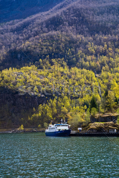 Norway fjord Stock photo © ElinaManninen