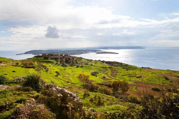 Tájkép sziget Málta gyönyörű zöld dombok Stock fotó © ElinaManninen