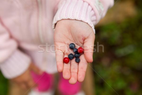 Child holding berries Stock photo © ElinaManninen
