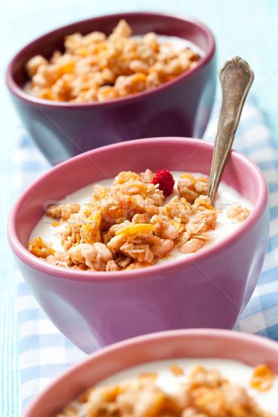 Kahvaltı gevreği kurutulmuş karpuzu meyve süt gıda Stok fotoğraf © ElinaManninen