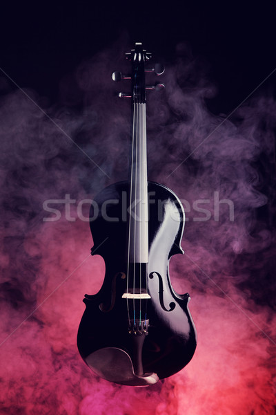 Elegant black violin in smoke  Stock photo © Elisanth