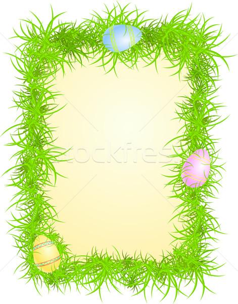 Ovos grama ovos coloridos abstrato verde branco Foto stock © Elisanth
