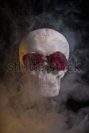 Human skull with red roses covered with smoke  Stock photo © Elisanth