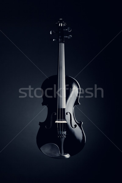 Stock photo: Elegant black violin