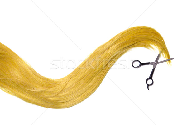 Long golden blonde hair with professional scissors  Stock photo © Elisanth