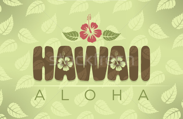 Vecteur Hawaii mot vintage couleurs hibiscus Photo stock © Elisanth