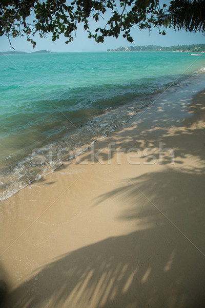 Idyllic tropical beach with white sand  Stock photo © Elisanth