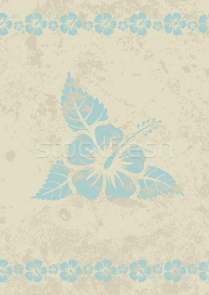 Vektor koszos bézs aloha hibiszkusz virág Stock fotó © Elisanth