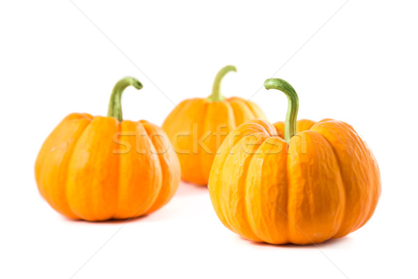 Small decorative pumpkins  Stock photo © Elisanth