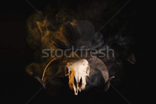 Ram skull with horns in a bowler hat  Stock photo © Elisanth