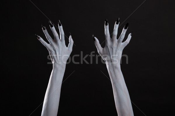 White witch hands with sharp black nails  Stock photo © Elisanth