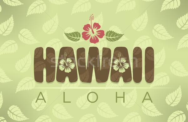 Hawaii aloha szavak hibiszkusz virágok absztrakt Stock fotó © Elisanth