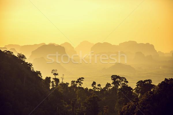 Güzel dağlar gün batımı krabi orman manzara Stok fotoğraf © Elisanth