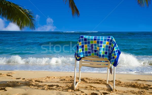 Branco folhas de palmeira oceano toalha céu Foto stock © EllenSmile