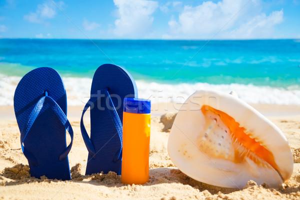 ヒトデ サングラス 砂浜 ハワイ 自然 ストックフォト © EllenSmile
