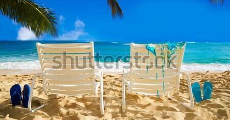 Cadeiras de praia oceano dois branco folhas de palmeira Foto stock © EllenSmile