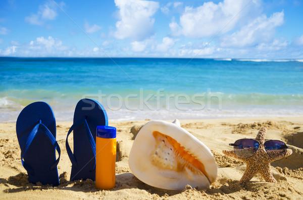 Concha protetor solar starfish praia azul Foto stock © EllenSmile