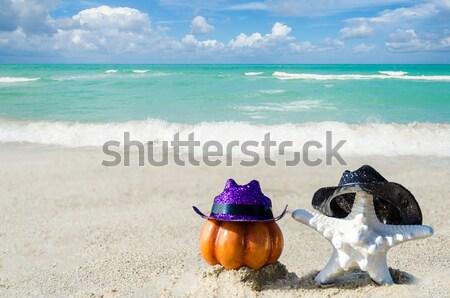 Concha starfish óculos de sol praia grande Havaí Foto stock © EllenSmile