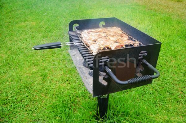 夏 バーベキュー 新鮮な 肉 グリル 日 ストックフォト © EllenSmile