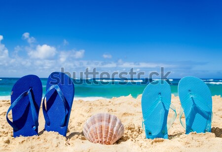 Flip flops, sunscreen, hat and starfish on sandy beach Stock photo © EllenSmile