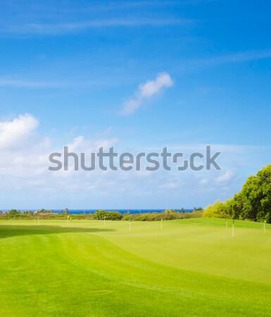 ゴルフ 公園 美しい 夏 日 ハワイ ストックフォト © EllenSmile