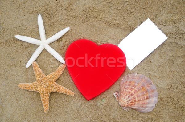 Forma de coração concha papel praia vermelho dois Foto stock © EllenSmile