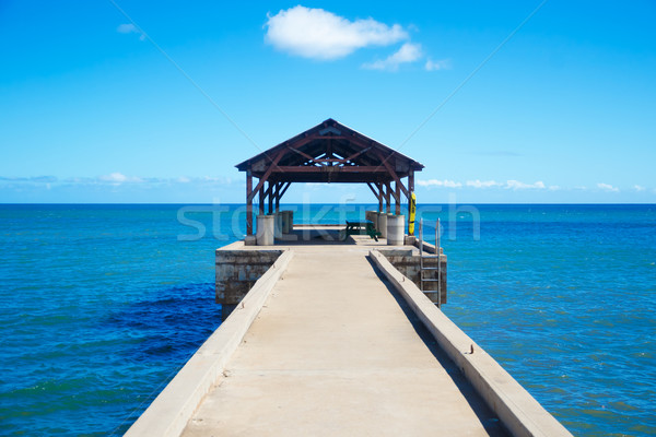 Pier oceano Havaí céu água madeira Foto stock © EllenSmile