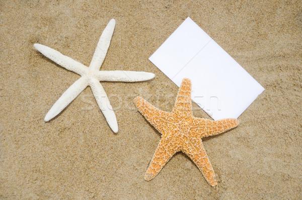 紙 ビーチ 2 作品 砂浜 自然 ストックフォト © EllenSmile