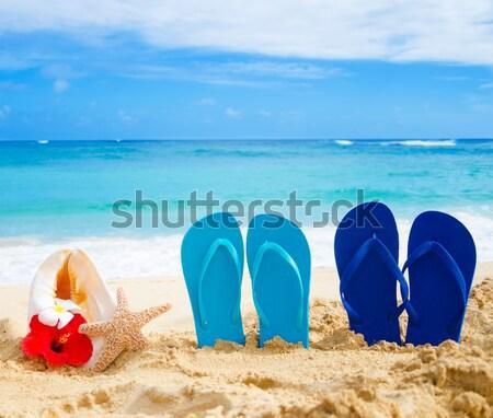 Flip flops, seashell and starfish on sandy beach Stock photo © EllenSmile