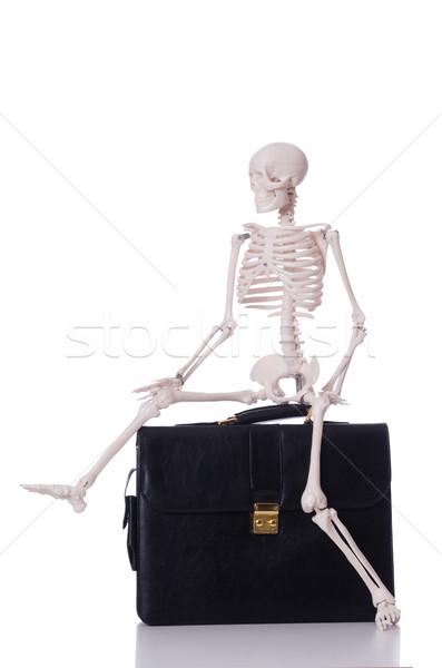 Esqueleto mala isolado branco homem médico Foto stock © Elnur