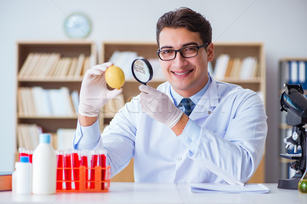 Scientist working on organic fruits and vegetables Stock photo © Elnur