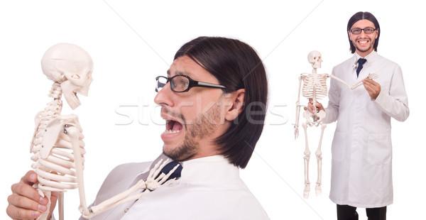 The funny teacher with skeleton isolated on white Stock photo © Elnur