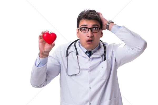 Jovem masculino cardiologista médico coração Foto stock © Elnur