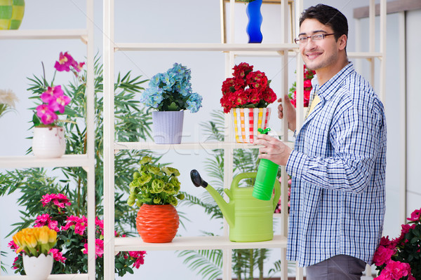 Gardener florist working in a flower shop with house plants Stock photo © Elnur