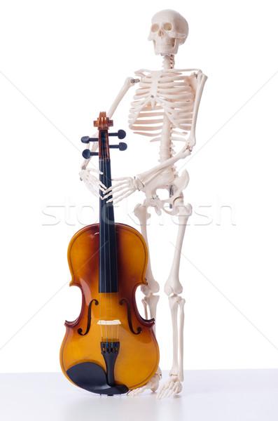 Csontváz hegedű izolált fehér zene művészet Stock fotó © Elnur