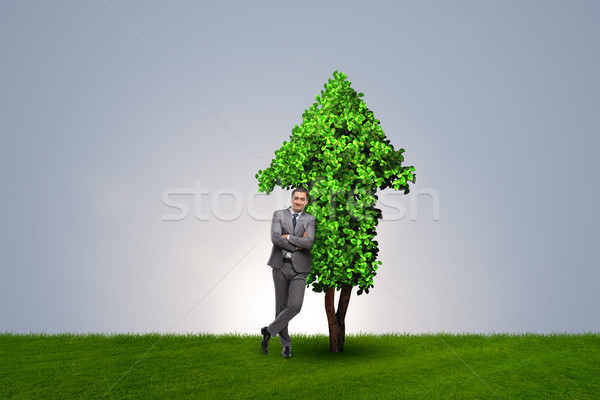 The businessman in sustainable green development concept Stock photo © Elnur