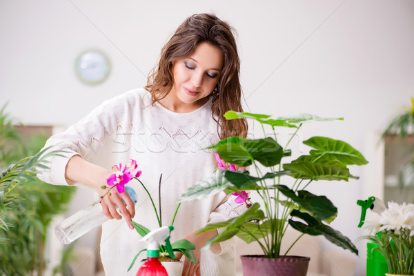 Stock photo: Young woman looking after plants at home
