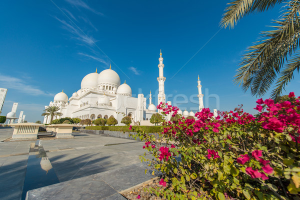 Sheikh Zayed Mosque in Abu Dhabi Stock photo © Elnur
