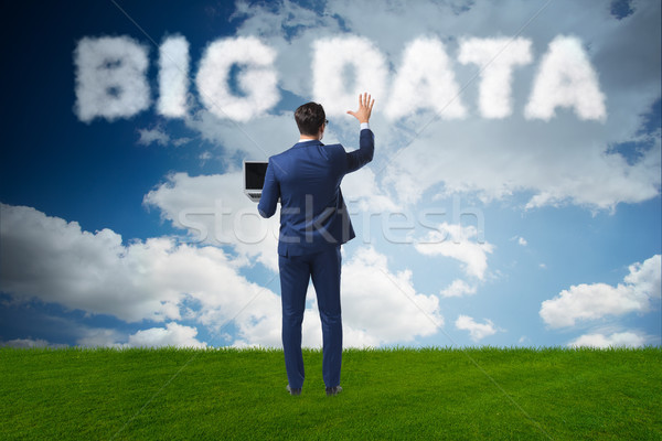Big Data concept in IT technology Stock photo © Elnur