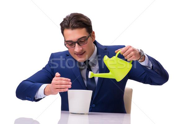 ストックフォト: ビジネスマン · じょうろ · 孤立した · 白 · 水 · お金