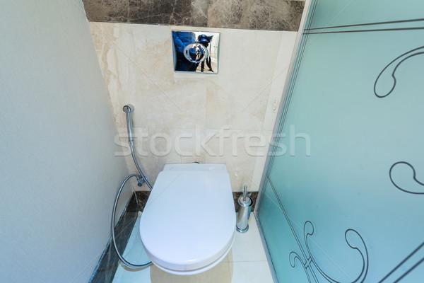 Modern interior of bathroom and toilet Stock photo © Elnur