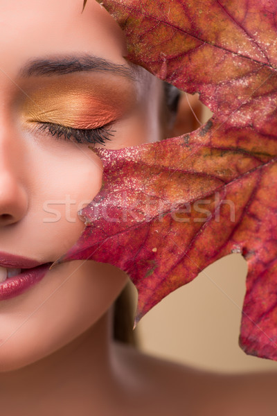 Zdjęcia stock: Piękna · kobieta · jesienią · wyschnięcia · pozostawia · kobieta · strony