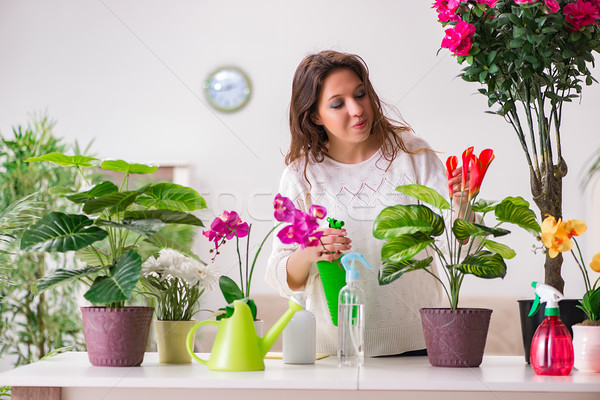Foto stock: Mulher · jovem · olhando · plantas · casa · flor · flores