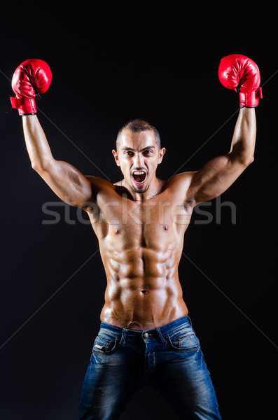Ripped boxer in sports concept Stock photo © Elnur