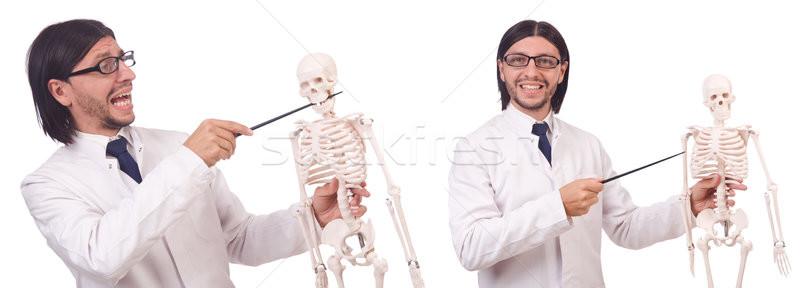 Funny teacher with skeleton isolated on white Stock photo © Elnur