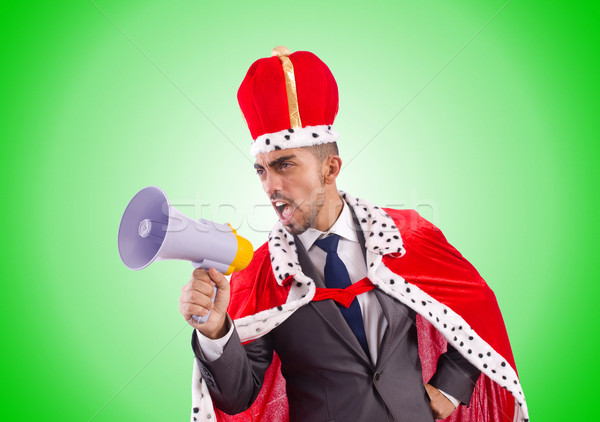 Roi affaires haut-parleur isolé blanche homme Photo stock © Elnur