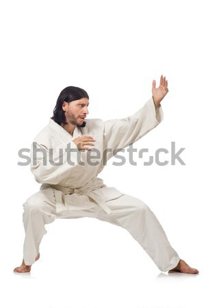 Karate vechter geïsoleerd witte man oefening Stockfoto © Elnur